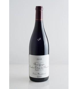 Bourgogne Hautes Côtes de Beaune Domaine Didier Montchovet 2013