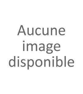 Côte-Rôtie  Champin Le Seigneur Domaine Jean-Michel Gerin 2011